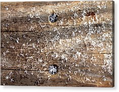 Snowflakes On Wood Acrylic Print by Barbara Giordano