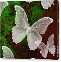 Snowflies Acrylic Print