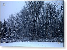 Snowing Acrylic Print by Barbara Giordano