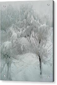 Snowland Acrylic Print by Kume Bryant