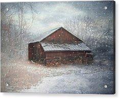 Snowland Acrylic Print by Mary Timman