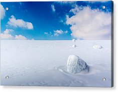 Snowman Some Assembly Required Acrylic Print by Randy Scherkenbach