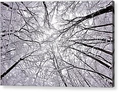 Snowstorm Acrylic Print by Benjamin Yeager