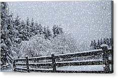 Snowstorm Coming Acrylic Print by Beverly Guilliams