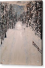 Snowy 27th Acrylic Print by Leslie Byrne