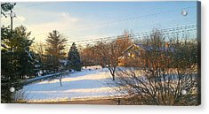 Snowy Afternoon Acrylic Print by Lucky Bro's