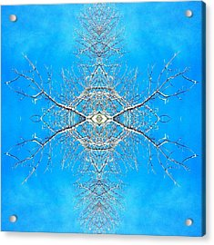 Snowy Branches In The Sky Abstract Art Photo Acrylic Print