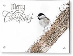 Snowy Chickadee Christmas Card Acrylic Print