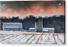 Snowy Cornfield Acrylic Print