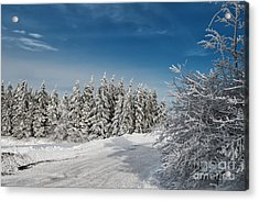 Snowy Country Lane Acrylic Print