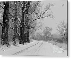 Snowy Country Road - Black And White Acrylic Print by Carol Groenen