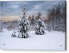 Snowy Dawn Acrylic Print by Deborah  Bowie