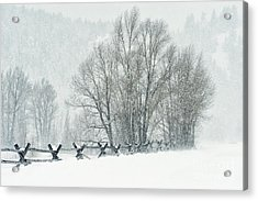 Snowy Day In The Tetons Acrylic Print by Sandra Bronstein