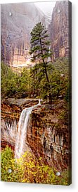 Snowy Day In Zion Acrylic Print by Darryl Wilkinson
