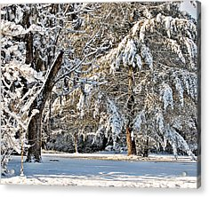 Acrylic Print featuring the photograph Snowy Day by Linda Brown