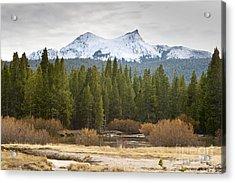 Snowy Fall In Yosemite Acrylic Print by David Millenheft