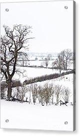 Snowy Fields Acrylic Print