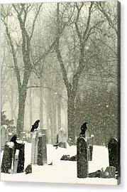 Snowy Graveyard Crows Acrylic Print by Gothicrow Images