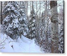 Snowy Hiking Trail Acrylic Print