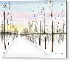 Acrylic Print featuring the drawing Snowy Lane by Arlene Crafton