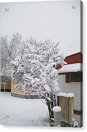 Snowy Lilac Acrylic Print by Jewel Hengen