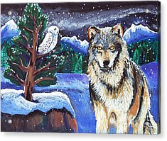 Snowy Night Wolf Acrylic Print by Harriet Peck Taylor
