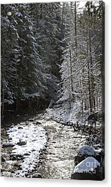 Snowy Oregon Stream Acrylic Print by Peter French