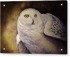 Snowy Owl Acrylic Print by Anna Franceova