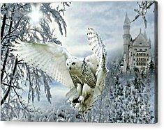 Snowy Owl Acrylic Print by Morag Bates