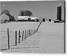 Snowy Pastoral Scene  At The Sheep Farm Acrylic Print by Thomas Camp