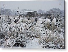Snowy Pasture Acrylic Print by Melany Sarafis