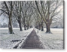 Snowy Path Through Jesus Green In Cambridge Uk Acrylic Print by Justin Paget