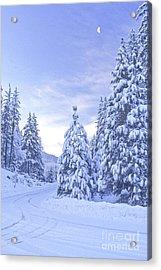 Snowy Road Ca Acrylic Print by Richard and Ellen Thane