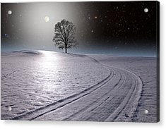 Acrylic Print featuring the photograph Snowy Road by Larry Landolfi