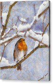 Snowy Robin Acrylic Print