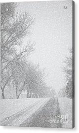 Snowy Rural Road Acrylic Print by Birgit Tyrrell