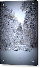 Acrylic Print featuring the photograph Snowy Scene by Karen Kersey