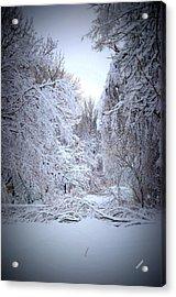 Snowy Scene Acrylic Print