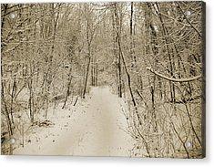 Snowy Sepia Acrylic Print by Betsy Knapp