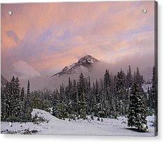 Snowy Surprise Acrylic Print