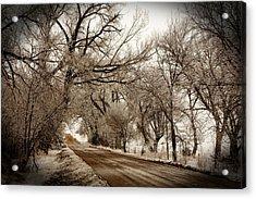 Snowy Trail Acrylic Print by Shirley Heier