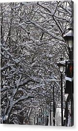 Snowy Way Acrylic Print by Frederico Borges