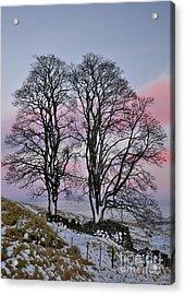 Snowy Winter Treescape Acrylic Print