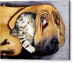 Snuggles Acrylic Print