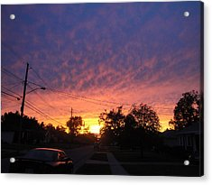 So Cool Ya Cant Fake It Acrylic Print by Suzanne Perry