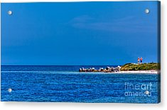 So This Is The Gulf Of Mexico Acrylic Print by Marvin Spates