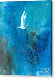 Soar II Acrylic Print by Mui-Joo Wee