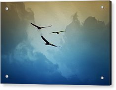 Soaring Eagles Acrylic Print by Bill Cannon