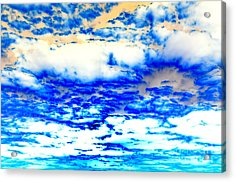 Acrylic Print featuring the photograph Soaring Sea by Christine Ricker Brandt