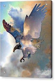 Soaring Acrylic Print by Ursula Freer